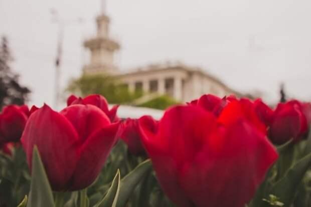 В Севастополе изменились размеры региональных стандартов, применяемых при расчете субсидий на ЖКУ