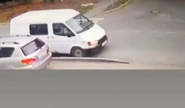 Общественники рассказали, кто может укрывать убийцу собаки вЖелезноводске