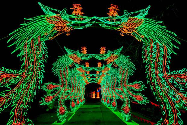 Китайский фестиваль света в Кельнском зоопарке