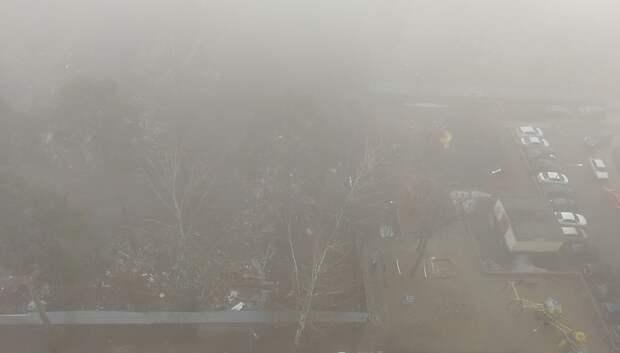 Туман и оттепель ожидаются в Московском регионе на следующей неделе