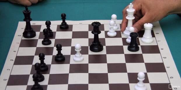 В шахматном клубе в Куркине прошел блицтурнир