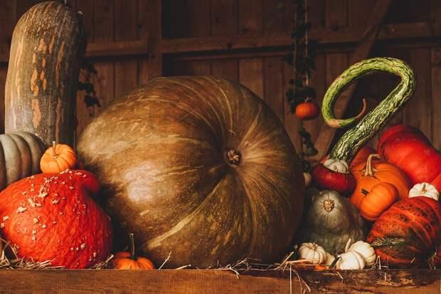 Осенняя композиция. Фото: pixabay.com