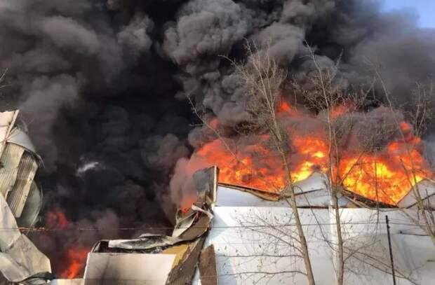 В сегодняшнем пожаре виновен непогашенный окурок