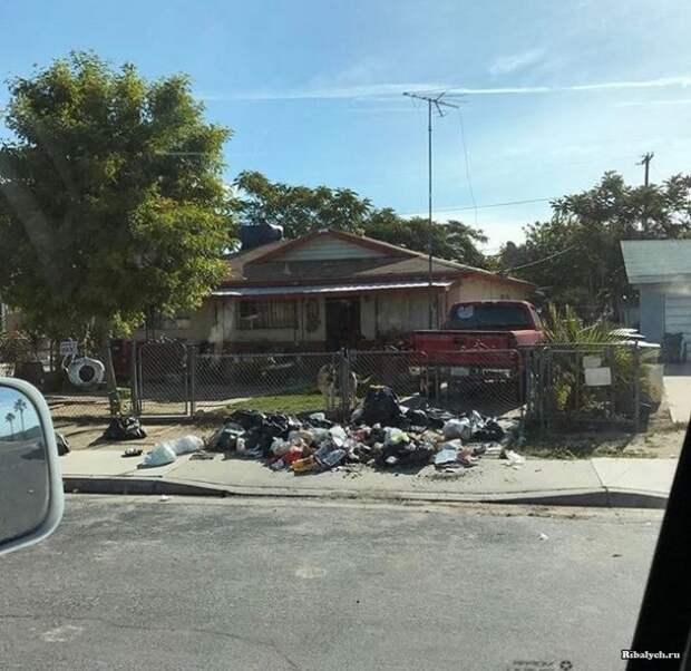 месть за мусор
