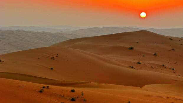 Украина превратится в пустыню через 20 лет