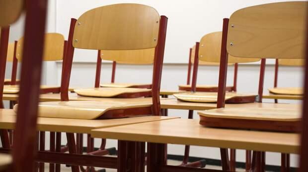 После каникул школы Удмуртии перейдут на дистанционное обучение