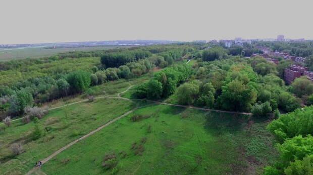 В Ростове суд признал незаконной передачу под строительство двух участков рядом с Александровской рощей