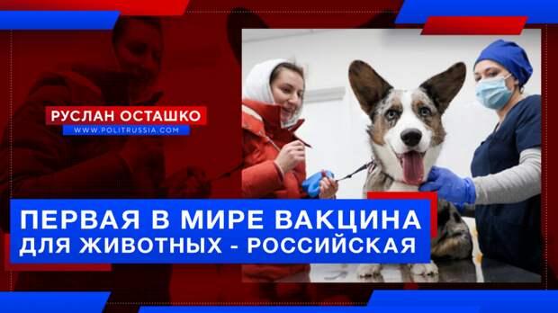 Россия зарегистрировала первую в мире антиковидную вакцину для животных
