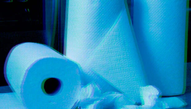 Пугающая история: бумажные полотенца