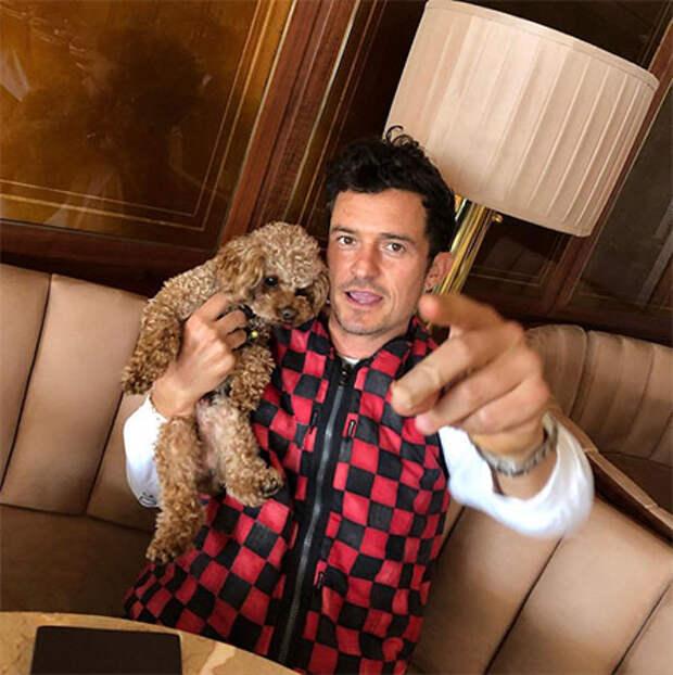 Кэти Перри показала личные снимки с Орландо Блумом по случаю его 44-летия