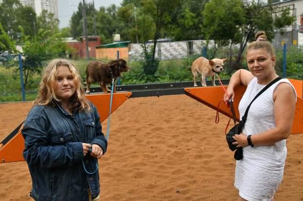 Собачью площадку на Черского отремонтировали с учётом пожеланий жителей