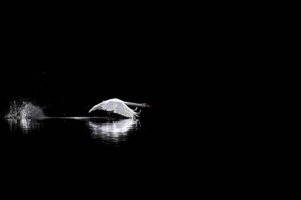 озеро Доббиако, Италия