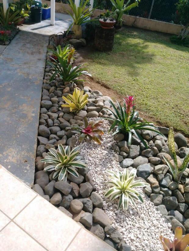 Сад камней. | Фото: viralins.