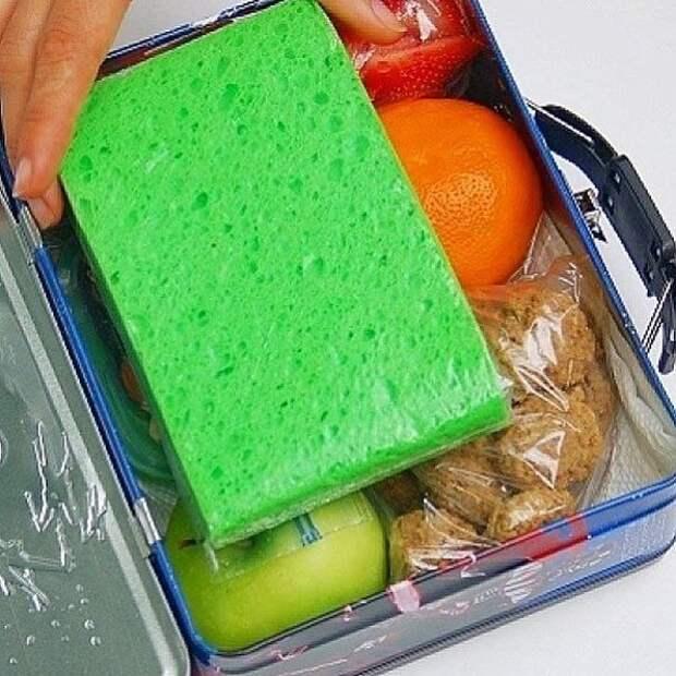 Замороженная губка в закрывающемся пакете поможет сохранить завтрак холодным Лайфхак, дети, крутые идеи, родители, смешно