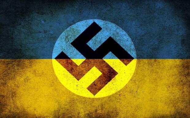 «Это ненацистская свастика», — Голландия увидела нацистов наУкраине (ФОТО)