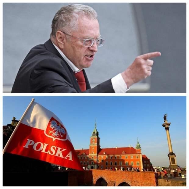 Жириновский предложил называть Польшу виновником начала Второй мировой