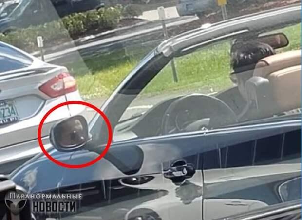На видео засняли пугающий глюк в автомобильном зеркале