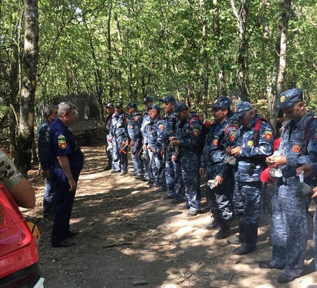 В Анапе локализовали лесной пожар