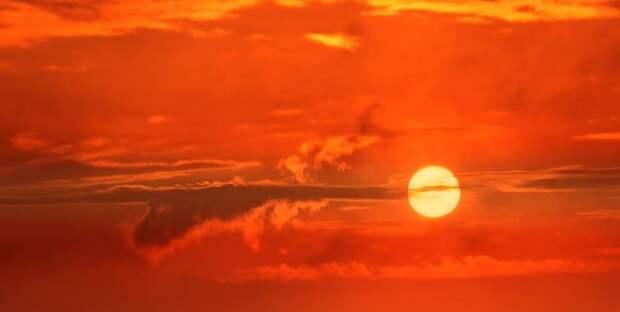 NASA: Начался новый цикл солнечной активности - ТЕЛЕГРАФ