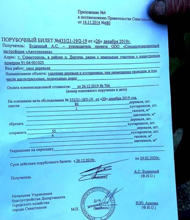 Департамент горхоза Севастополя разрешил рубить деревья ради парковки