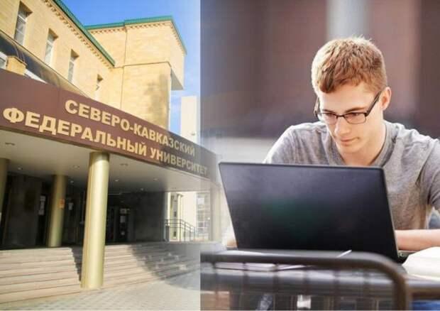 Крупнейший федеральный ВУЗ Северного Кавказа дважды в год намерен проводить цифровые ярмарки вакансий