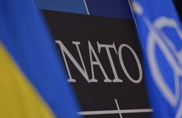Украину расколола тема вступления в ЕС и альянс — социологи