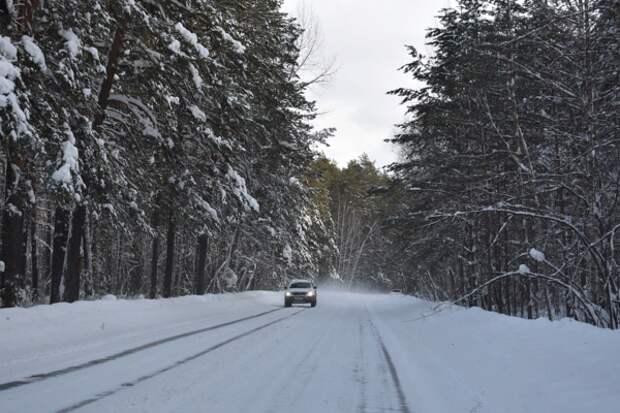 https://pixabay.com/ru/photos/зима-снег-лес-дорога-сосны-сибирь-3840856/