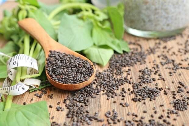 Как правильно собрать семена базилика