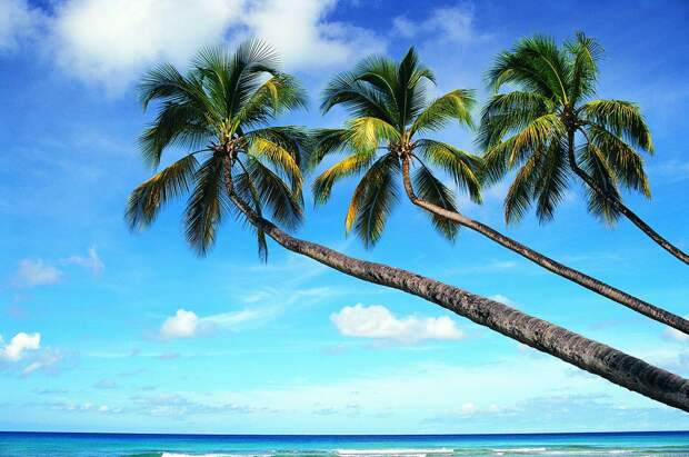 Очень красивые фотографии островов (54 Фото) Траффик
