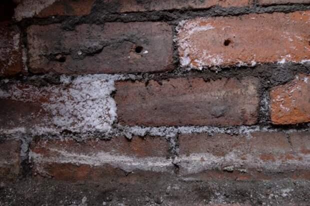 Сырость в подвале частного дома как устранить