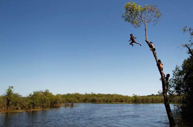 Племя в Бразилии