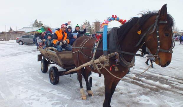 ВОренбуржье запустят пассажирские перевозки налошадях между отдалёнными районами