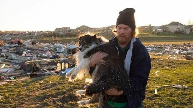 """Мужчина отыскал своего """"друга"""" после урагана дружба, люди, мир, фото"""