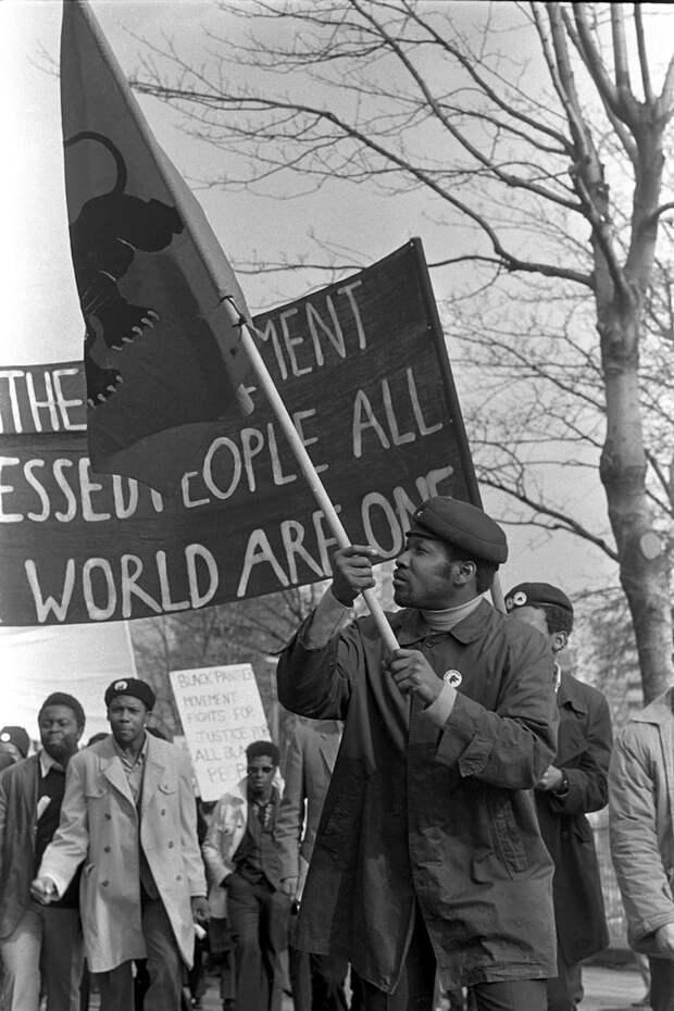 Социальные конфронтации в США 1960-х - 1970-х годов: Леворадикальная Партия черных пантер   (29)