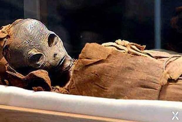 Саркофаг с инопланетной мумией