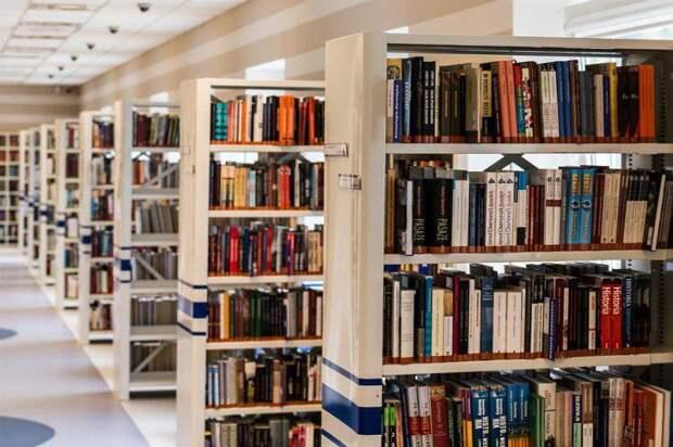 Книги/ Фото pixabay.com