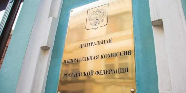 ЦИК: депутатов с двойным гражданством не допускали к выдвижению