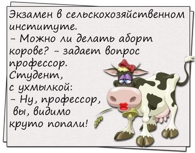 """Жена разбила тарелку и ворчала на себя: """"Дура! Корова! Безрукая!""""..."""
