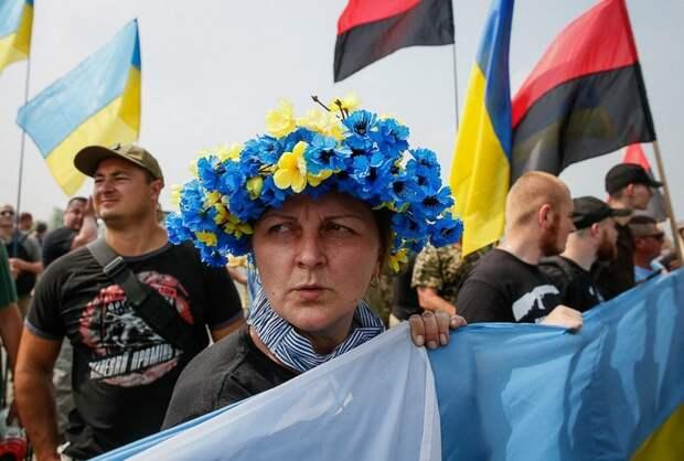 Юлия Витязева: Новости уютного мирка паразитов