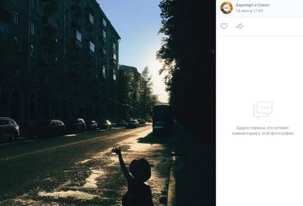 Фото дня: тополиный пух застелил улицы Сокола