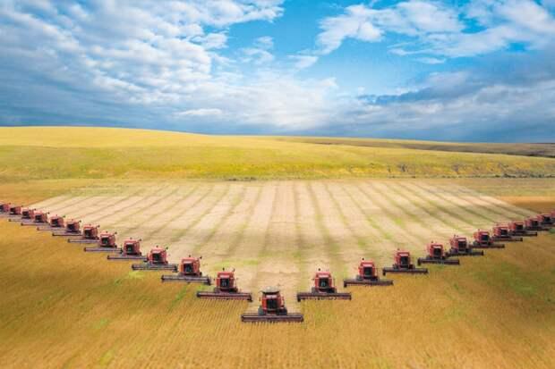 Sohu: развитие сельского хозяйства в России угрожает Вьетнаму