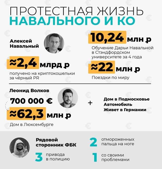 Навальнисты для Волкова и Навального – средство для заработка
