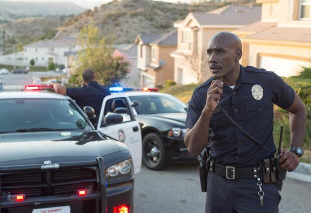 Полицейские рассказали об абсурдных ситуациях, которые произошли во время их службы
