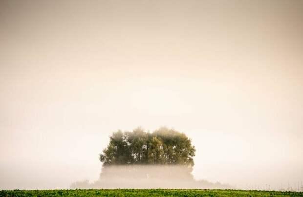 Фото дня: туманное утро в Дании