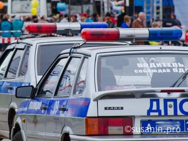 В Удмуртии нетрезвый водитель покусал инспектора ДПС в патрульном авто