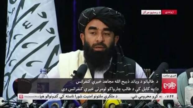 Талибан-бодрячок