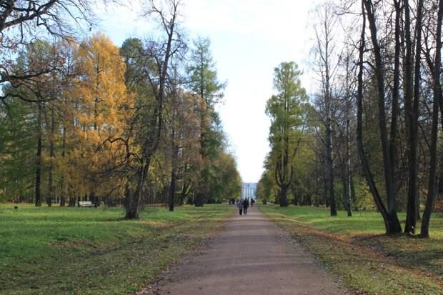 Царское Село. В Александровском парке