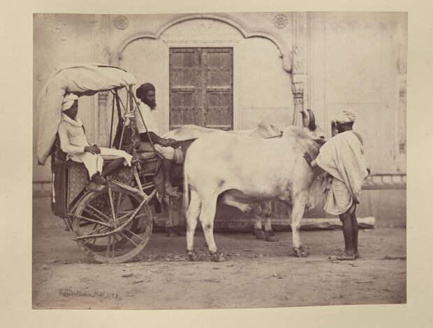 Albom fotografii indiiskoi arhitektury vzgliadov liudei 12