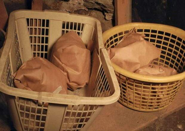 Хранение капусты в бумаге