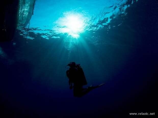 underwater_043